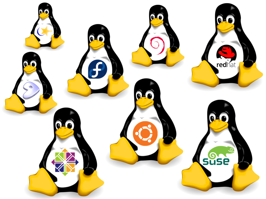assistenza linux