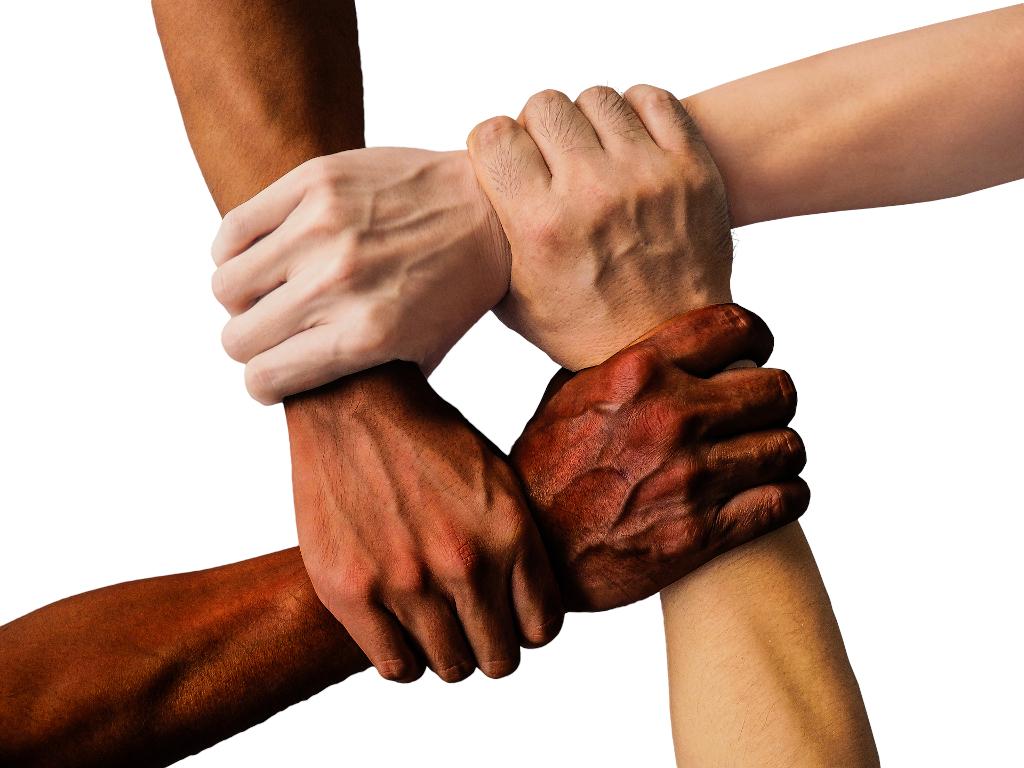 forza della community
